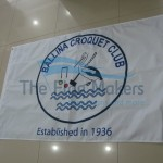Custom Flag School